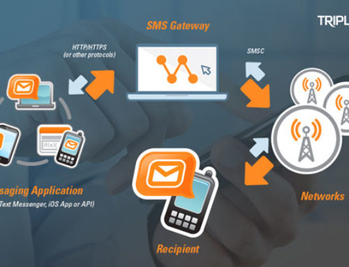 This Is What Do You Need to Know About Bulk SMS for Business